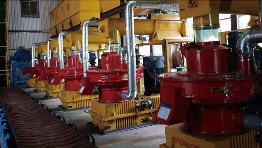 Taiwan's 10t/h Wood Pellet Production Line