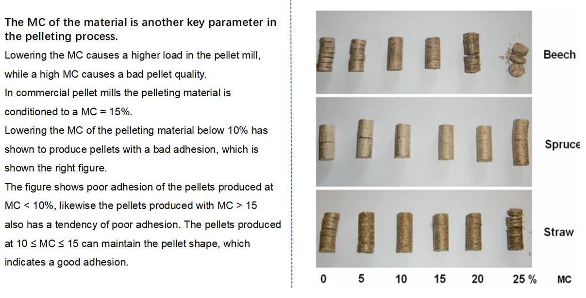 5. Biomass Pellets Standard
