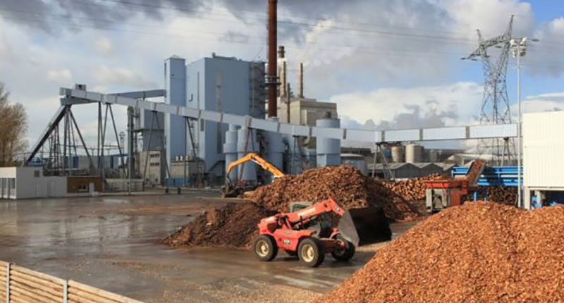 Japan and South Korea demand growth will stimulate Thailand biomass pellet exports