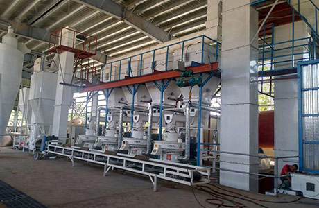 8 Tons of Palm Silk Pellet Production Line Per Hour in the Philippines