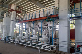 8t/h wood pellet production line in Philippines