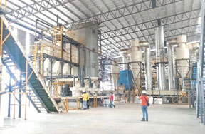 10t/h wood pellet production line in Malaysia