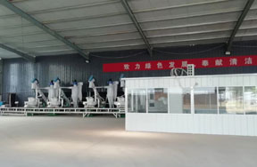 10t/h wood pellet production line in China